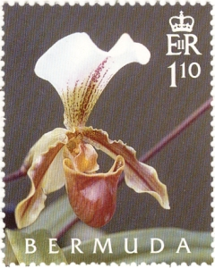 Bermuda stamp orchids 4 2005