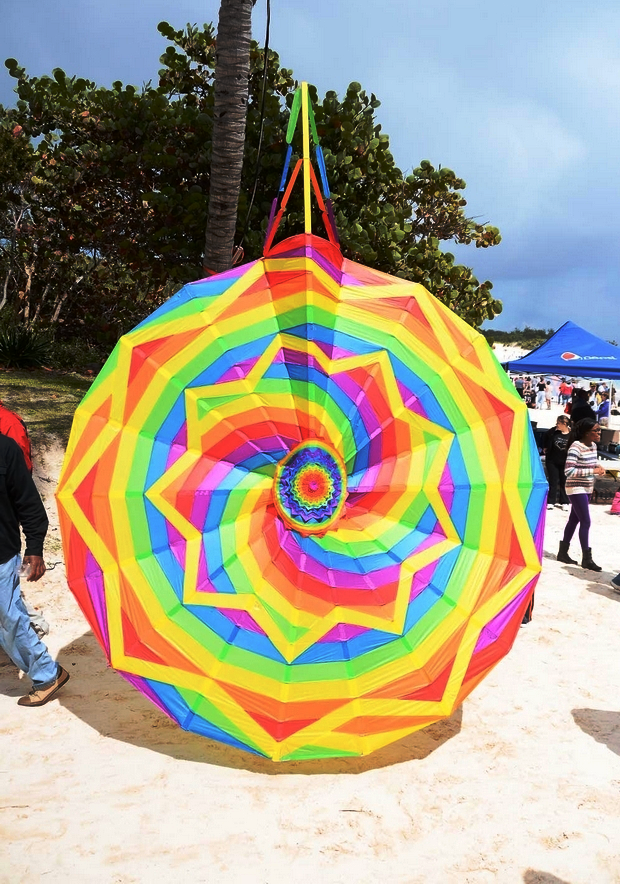 Kite in Bermuda 2013